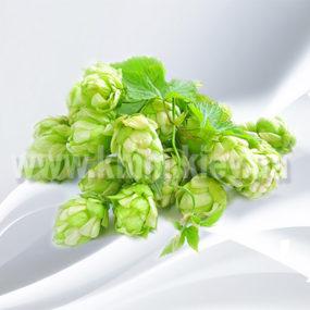 Хмель обыкновенный сухоцвет