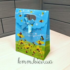 Пакет Цветы и бабочки на липучке 160ммх125мм