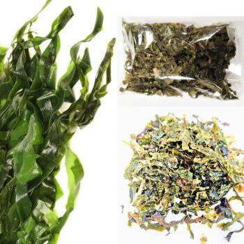 Ламинария сушеная (морские водоросли).